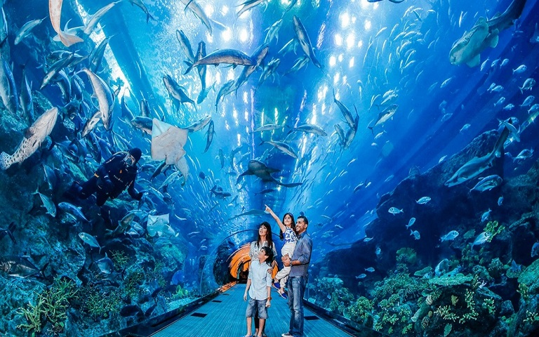 12 Top-Rated Attractions _ Things to Do in Dubai2