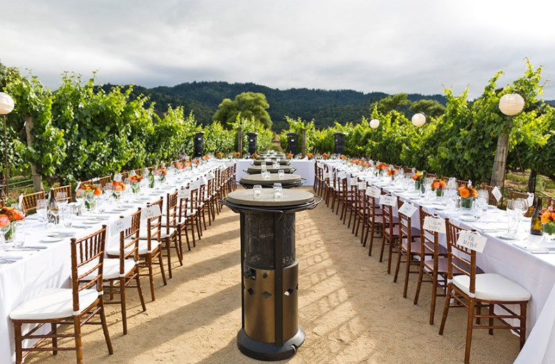 The 15 Best Venues for Outdoor Weddings in the USA4