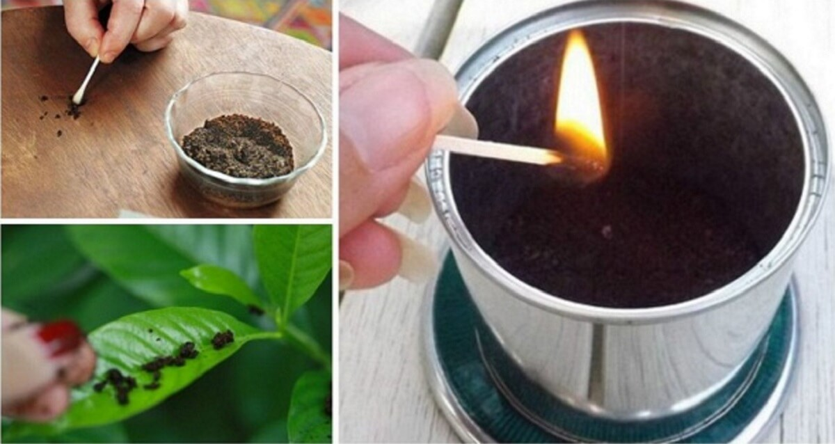 15 best uses of coffee grounds-1