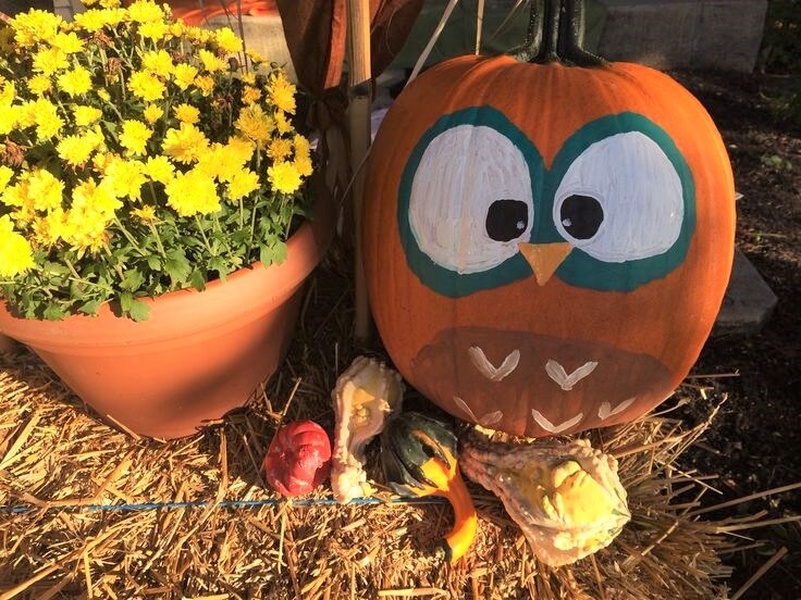 20 Easy Halloween Pumpkin Painting Ideas-14