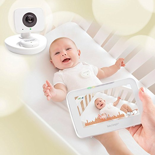 The Top 10 Picks for Baby Camera Monitors-Baby Delight Snuggle Nest