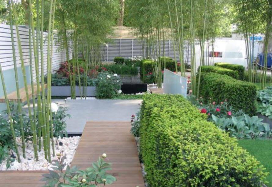 9 Best Ideas about Backyard Designs5