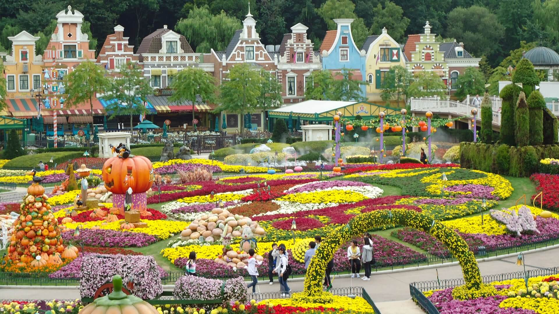 The Top Things You've Got to Do and See in Seoul Korea - Everland Resort