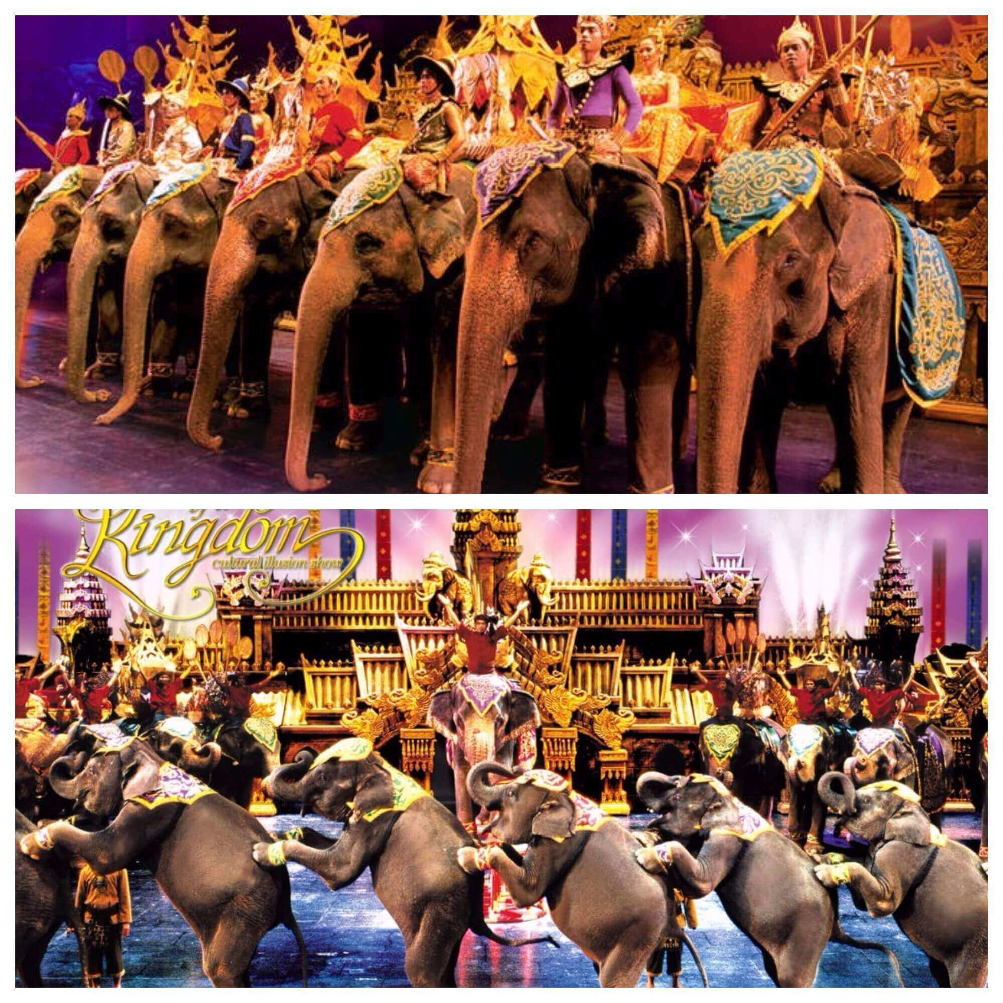 The Ultimate Travel Guide to Visit Phuket Thailand-Elephant Show