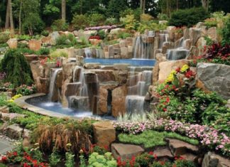 Valuable Tips for Creating Beautiful Garden Landscapes
