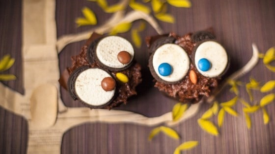 20 Spooky Cookie and Cupcake Recipe Ideas for Halloween 16