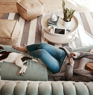 What to Know Before Introducing a Pet to the Condo Life