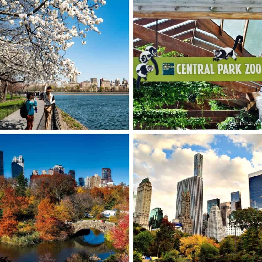 new-york-city-travel-guide-where-to-go-and-what-to-see-central-park