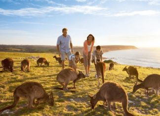 7 Underrated Travel Destinations in Australia