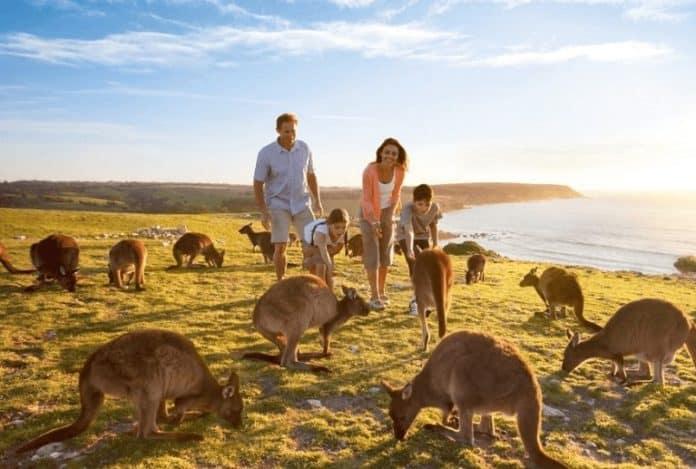7 Underrated Travel Destinations in Australia