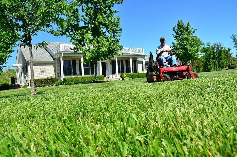 Great Lawn Care Tips for Time-Strapped Homeowners in Summer-2