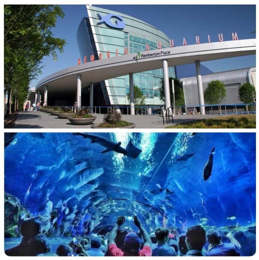 top-7-exciting-things-to-do-in-atlanta-Georgia Aquarium