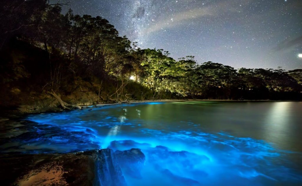 20 Weird Places around the World You Must Visit- Bioluminescent Waters Maldives