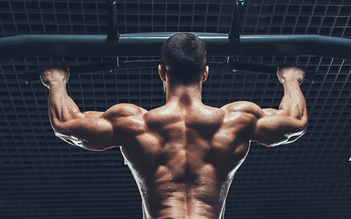 5 Foundational Mass Moves for Your Upper Body Building
