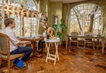 11 Spectacular Travel Destinations You Should Visit in Kenya
