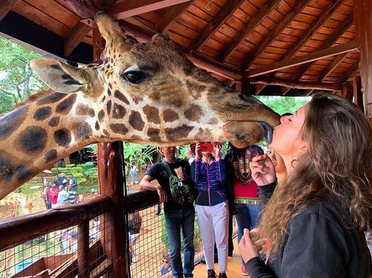 11 Spectacular Travel Destinations You Should Visit in Kenya- Nairobi